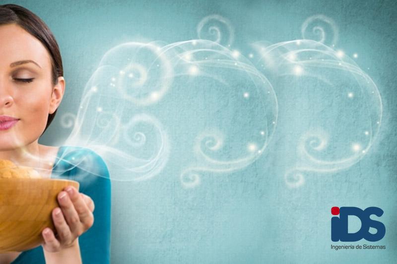 Curso de Aromaterapia y Aceites Esenciales online - Ingeniería de Sistemas
